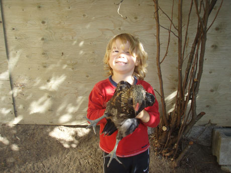 Mark and Brandy Willmot's son, Aidan, holds the chicken the family says will stay at their home.